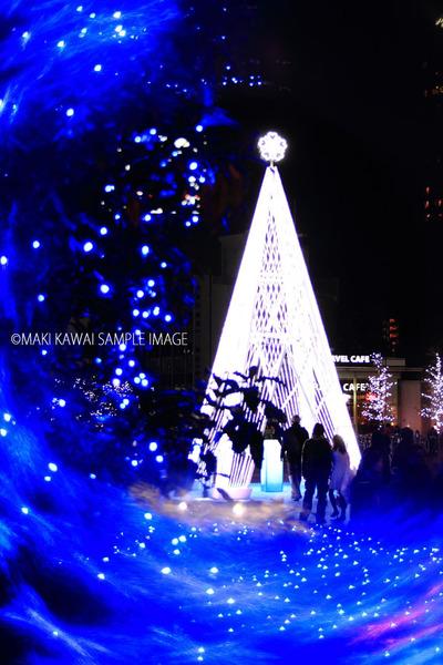 Img_3778kawai