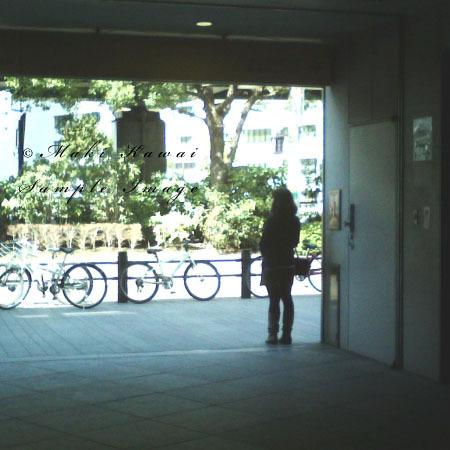 Pict0038kawai