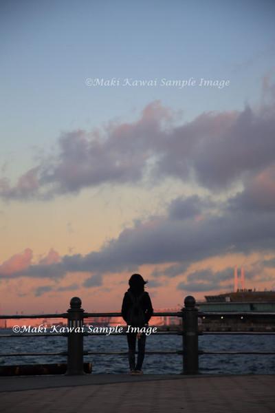 Img_6263_kawai