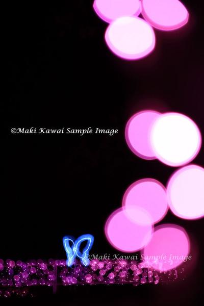 Img_6810_kawai