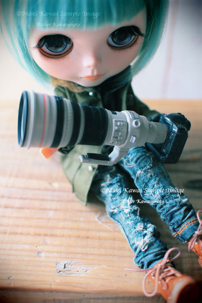 Img_0062kawai