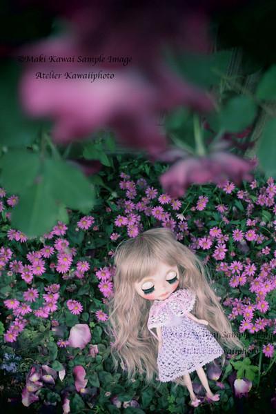 Img_0330kawai