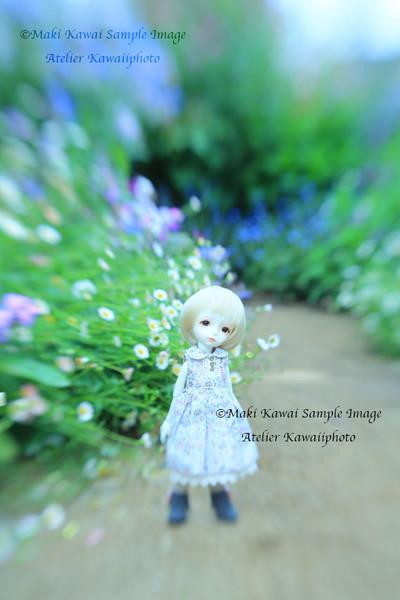Mk1_8339kawai