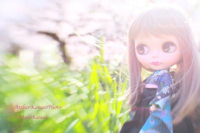 Mk1_8324kawai
