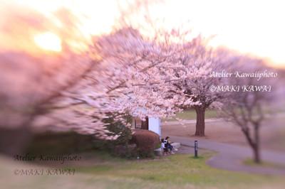 Mk1_9284kawai