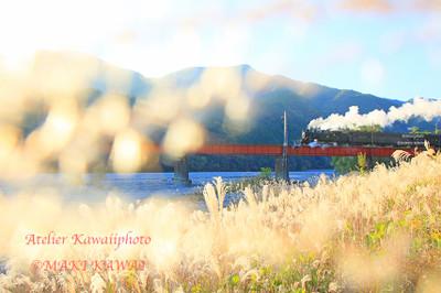 Kawa0786ps_kawai